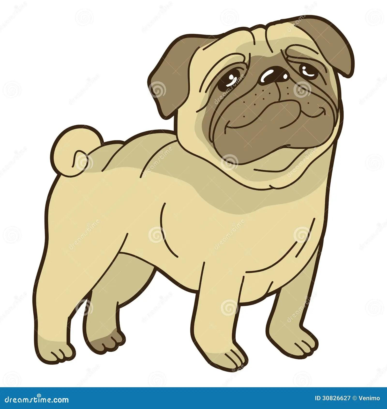 Cute Pug Puppies Wallpapers Vector Funny Cartoon Pug Stock Illustration Illustration