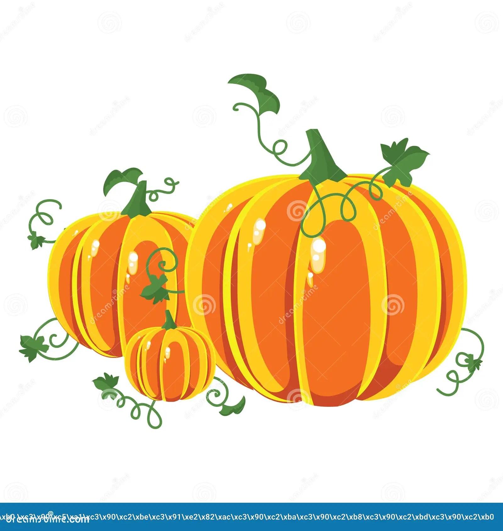 Free Fall Pumpkin Wallpaper Vector Pumpkins Three Pumpkins Of Different Sizes Royalty