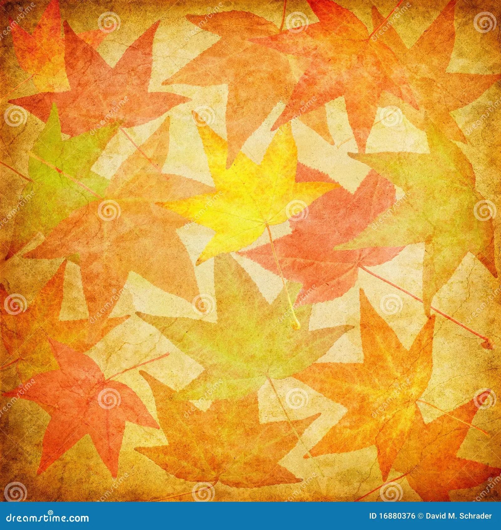 Fall Desktop Wallpaper For Mac Vintage Fall Leaves Royalty Free Stock Image Image 16880376