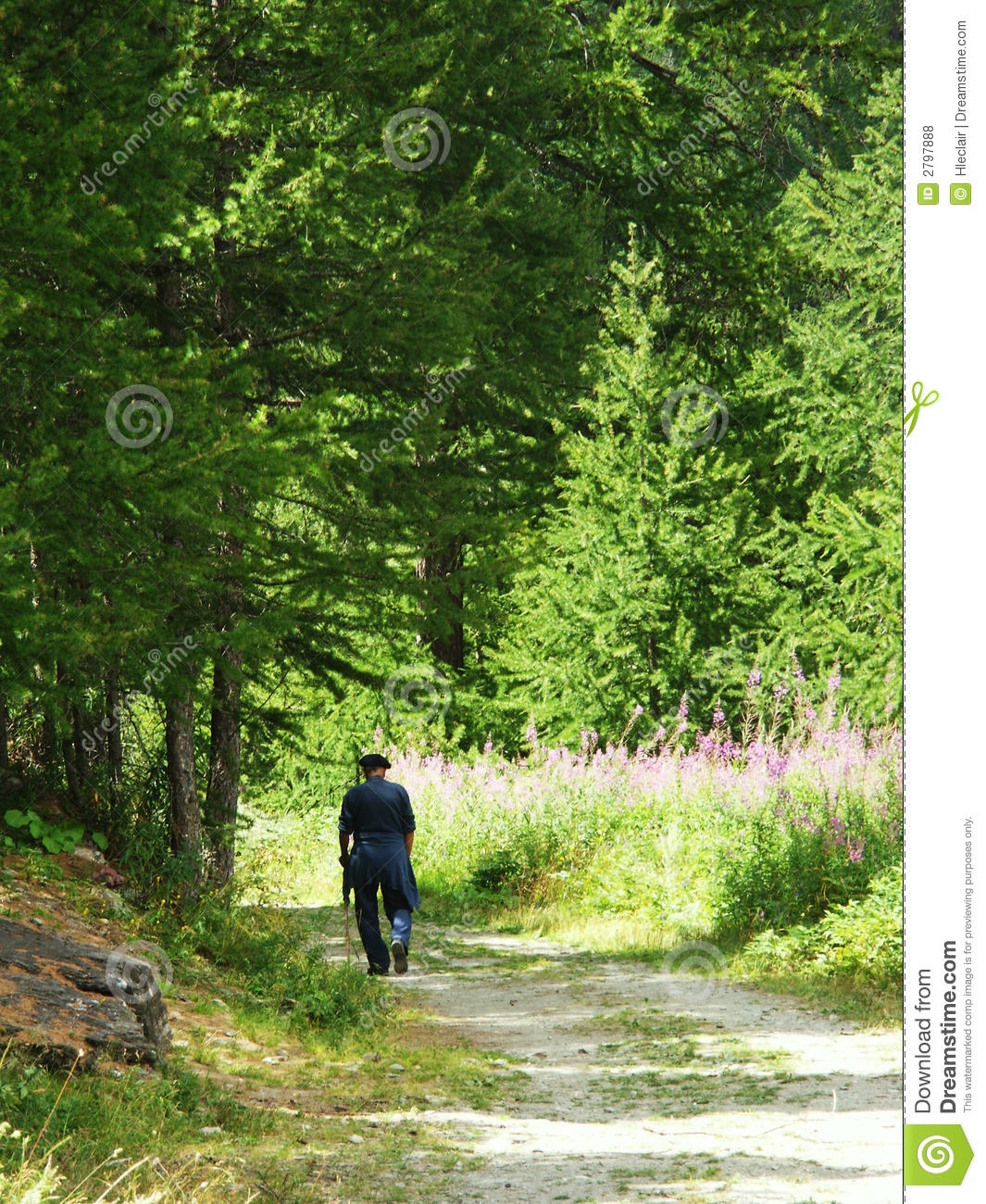 Alone 3d Wallpaper Walking Alone Royalty Free Stock Photos Image 2797888