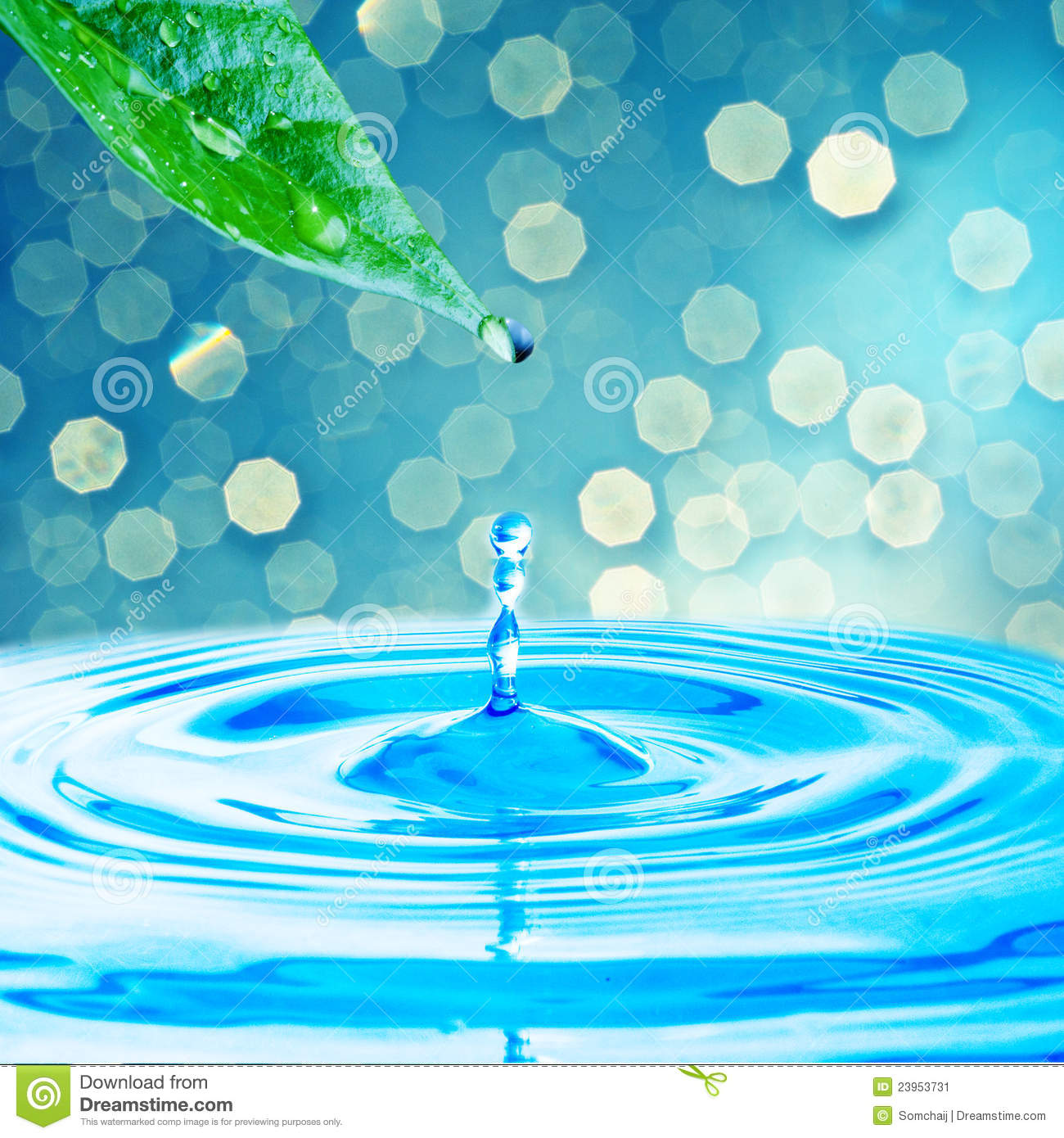 3d Water Drop Wallpaper Water Drop From Green Leaf Stock Image Image 23953731