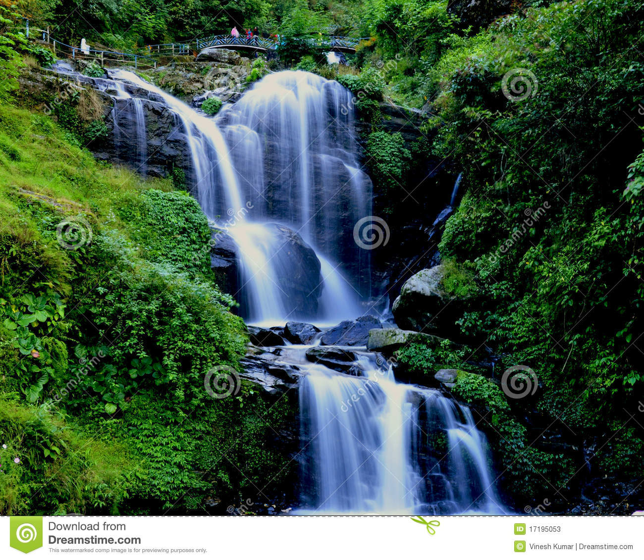 Animated Jungle Wallpaper Water Fall White Water In Flow Stock Image Image 17195053