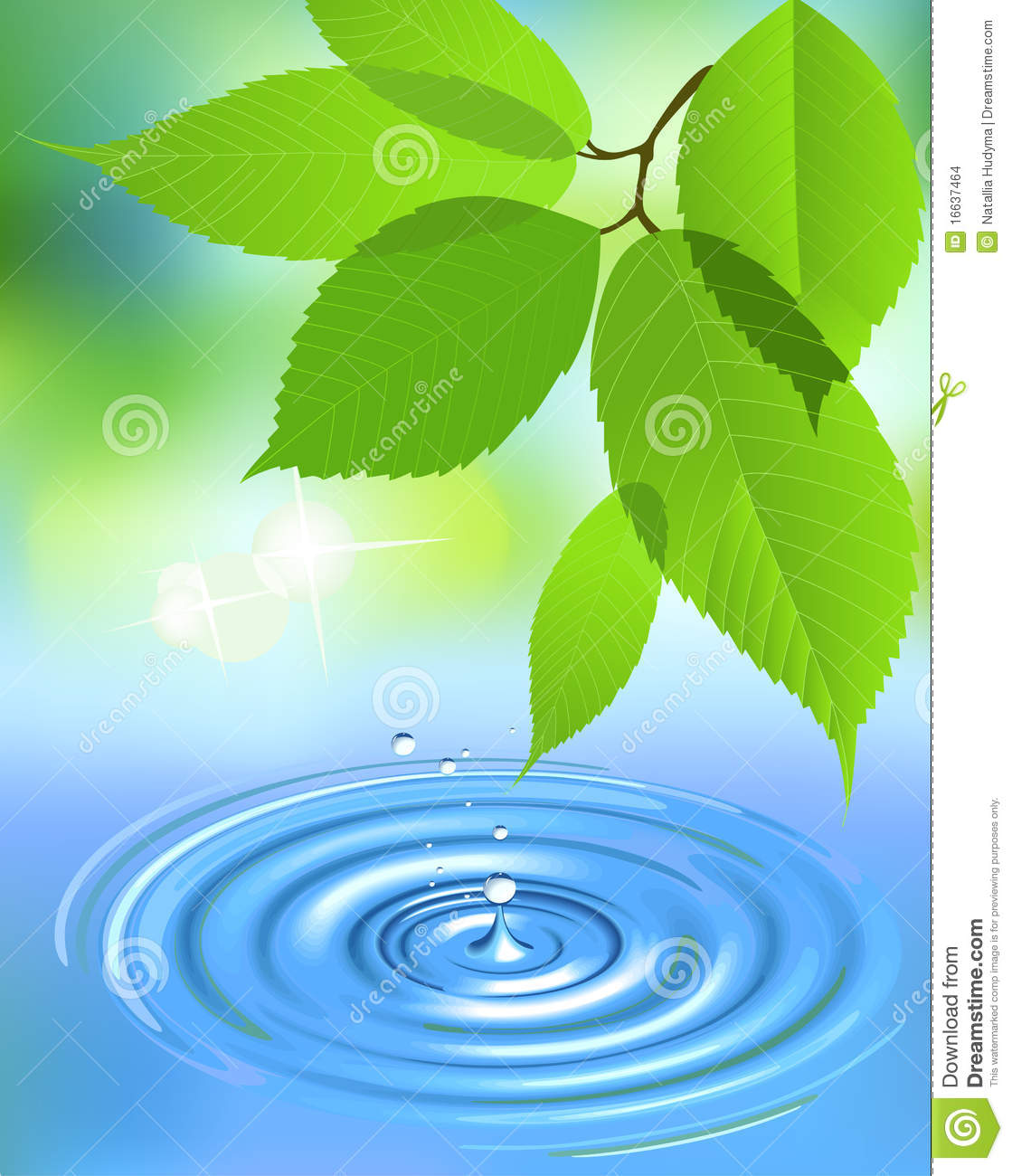 Raindrop Wallpaper Iphone X Water Splash And Leaves Stock Vector Image Of Image