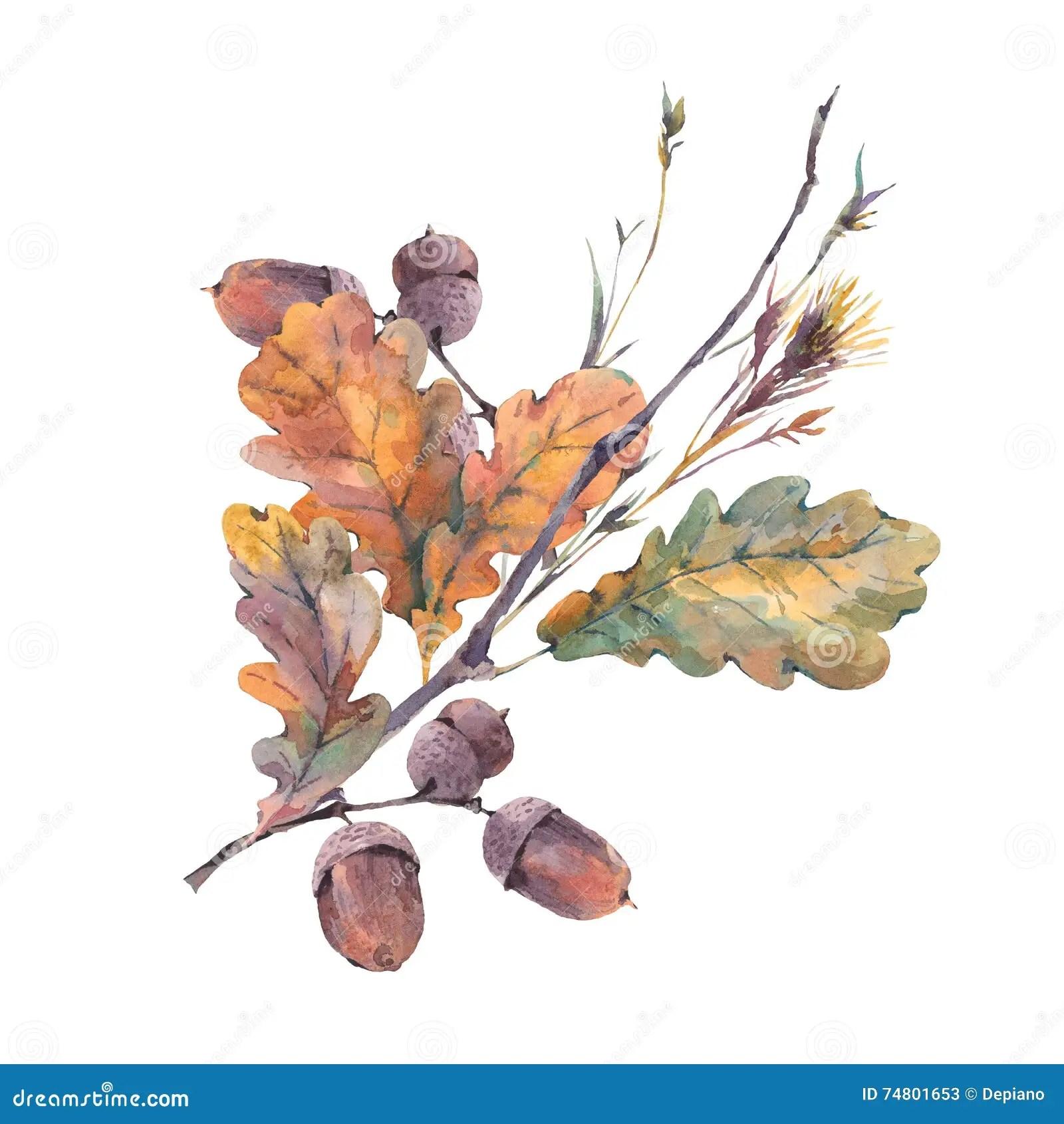 Fall Leaves Watercolor Wallpaper Watercolor Autumn Vintage Bouquet Stock Illustration