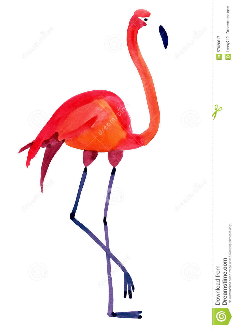 Exotic Animal Wallpaper Watercolor Illustration Of Flamingo In White Background