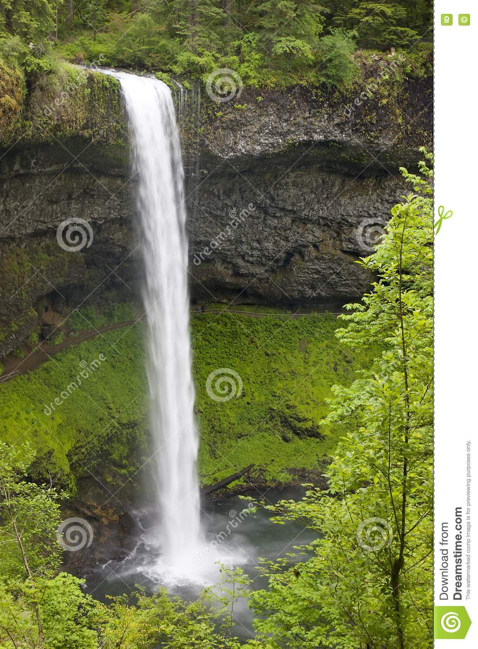 Swot Castorama Free Stock Images Waterfall In Oregon Picture Image 5530159