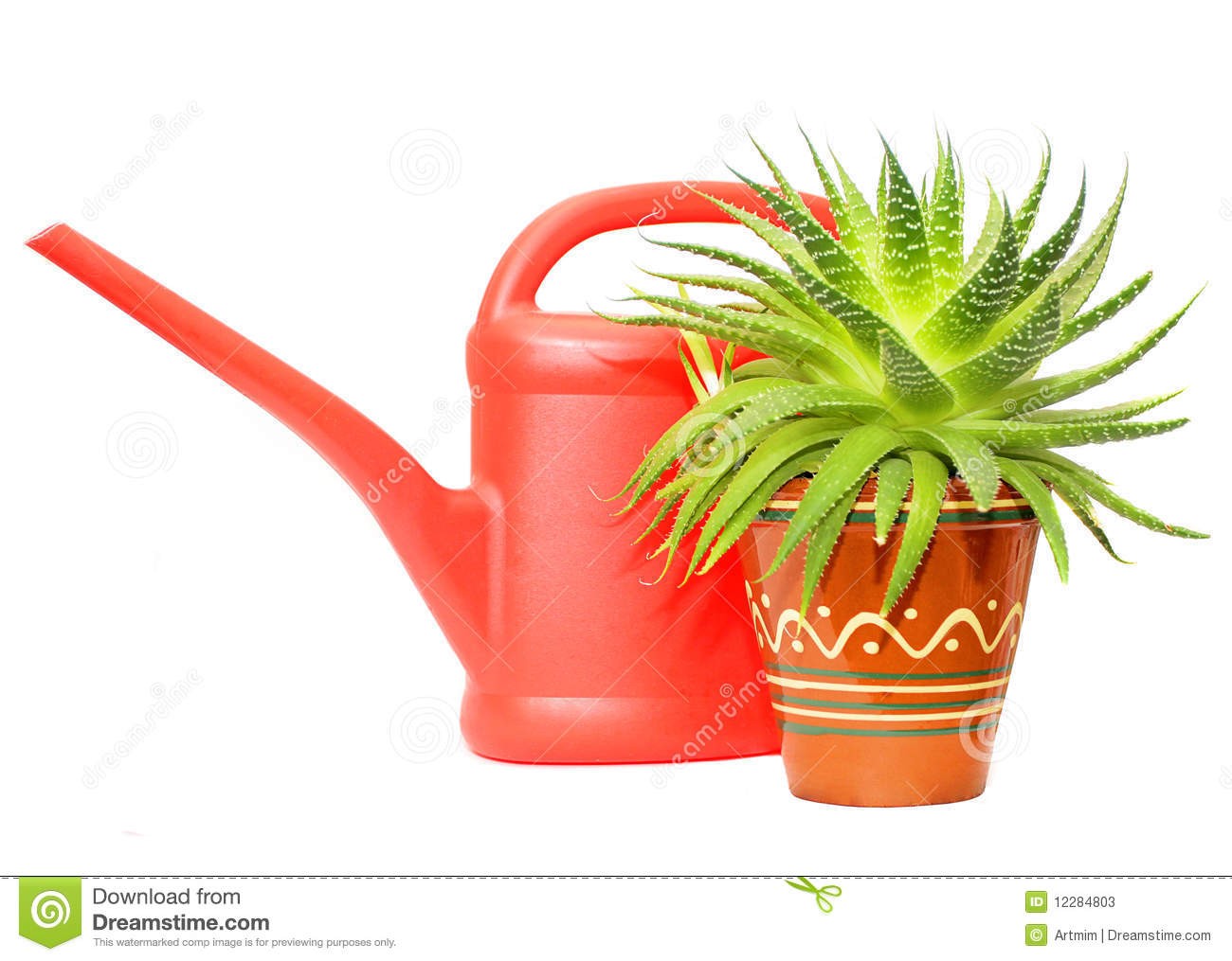 Plant Watering Cans Watering Can And Green Plant Stock Photos Image 12284803