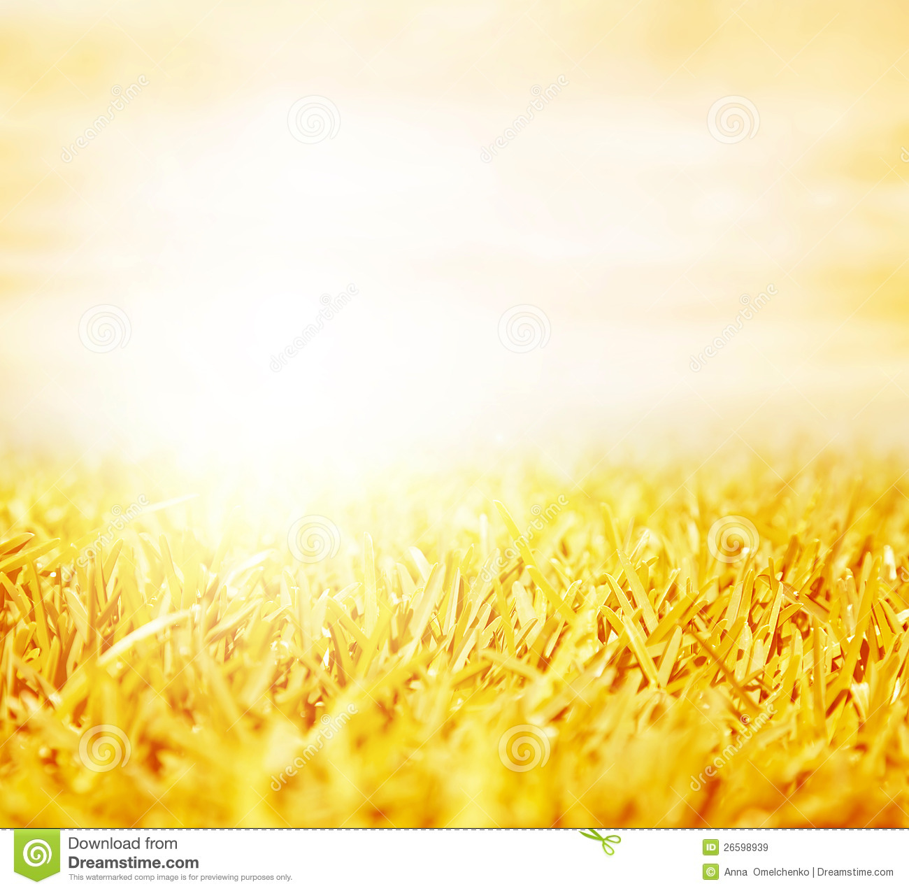 Fall Morning Sun Wallpaper Wheat Field Stock Image Image Of Meadow Autumn Nature