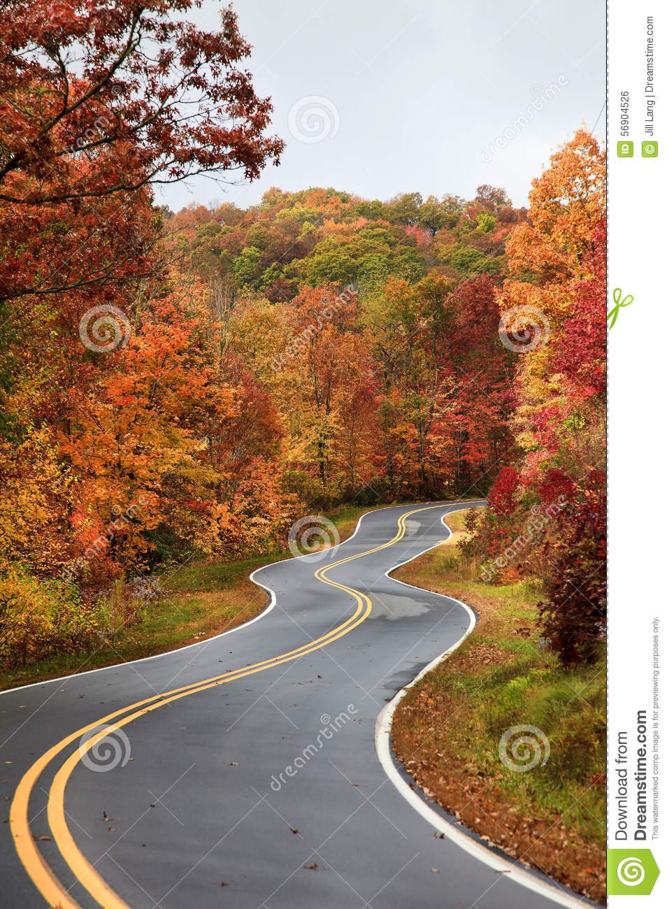 Fall Country Wallpaper Winding Road In The Fall Stock Photo Image 56904526