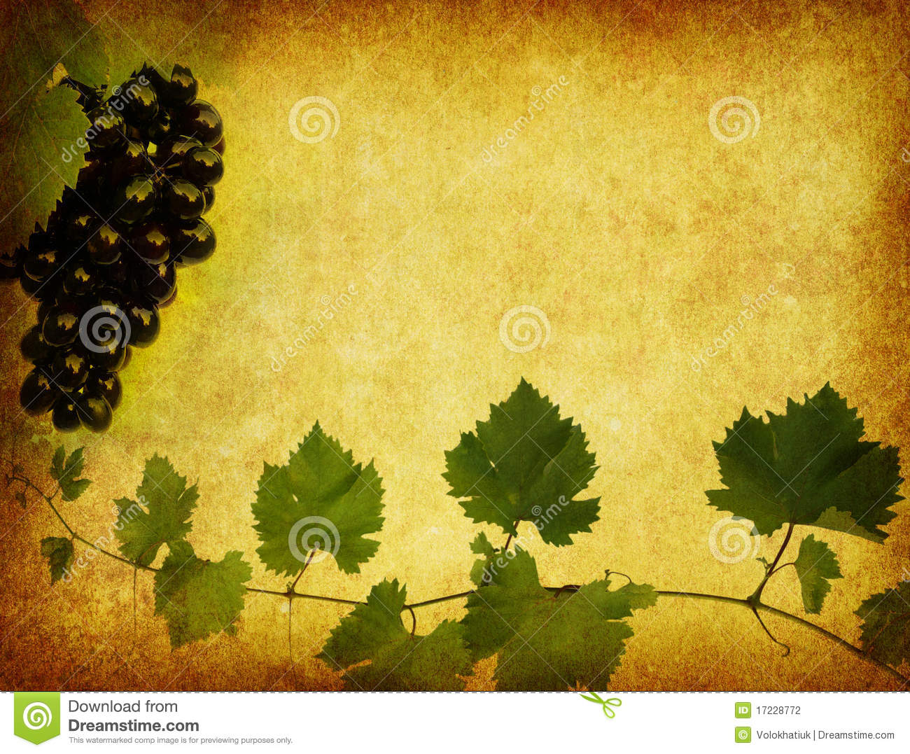 wine label background