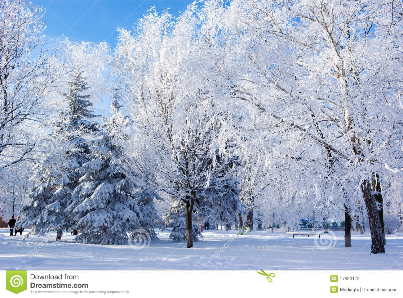 Fall Landscape Wallpaper Winter Nature Stock Image Image Of Light Outdoor