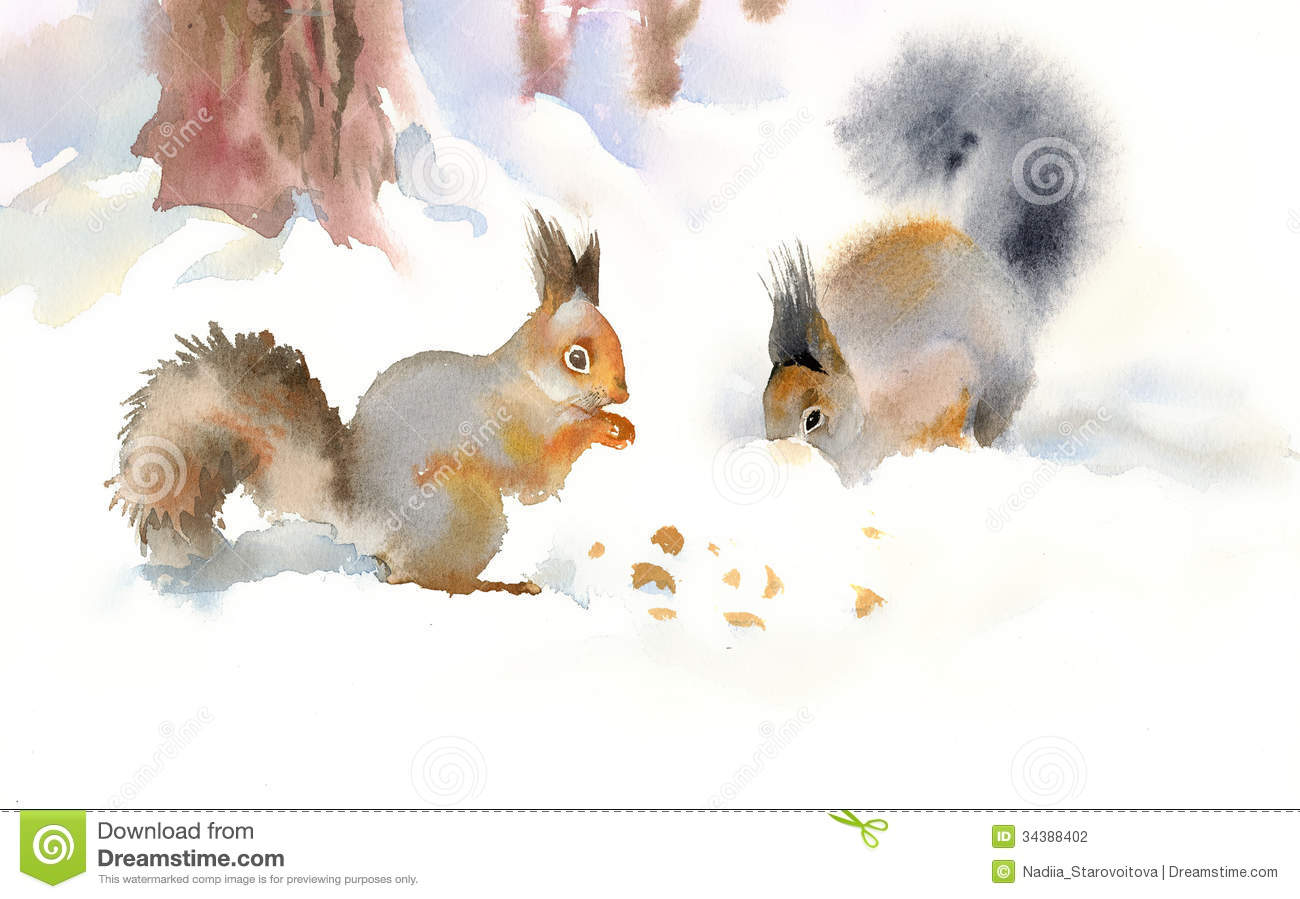 Red Animal Print Wallpaper Winter Squirrels Eating Nuts Stock Photography Image