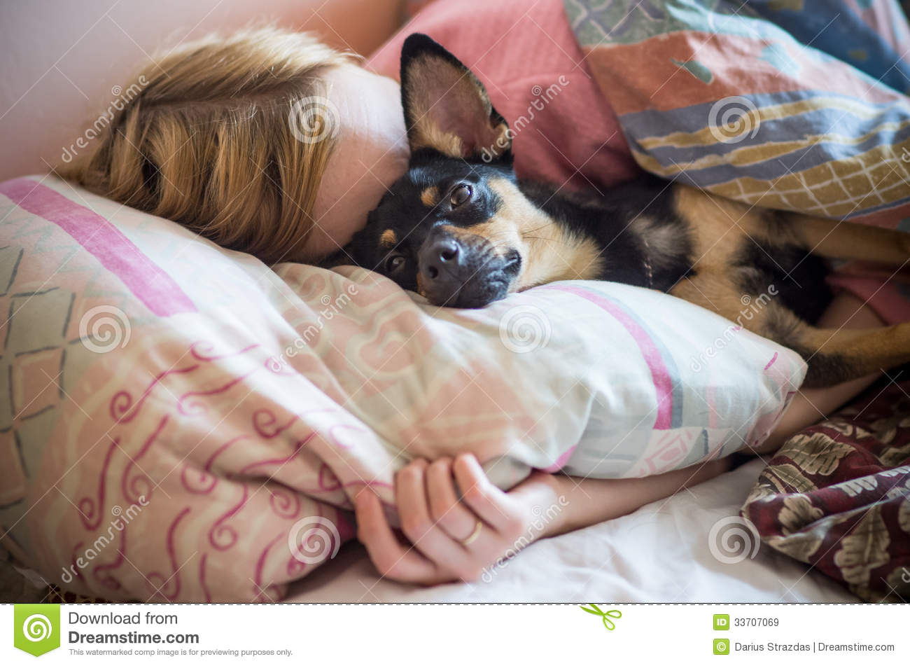 How To Be More Confident In Bed Woman With Dog Sleeping In The Bed Royalty Free Stock