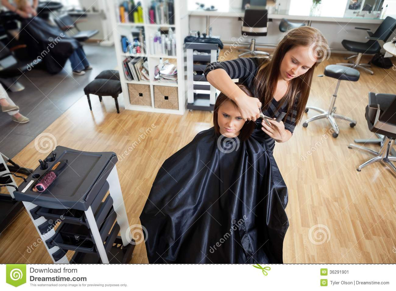 Salon Cut In Woman Getting A Hair Cut Stock Image Image 36291901
