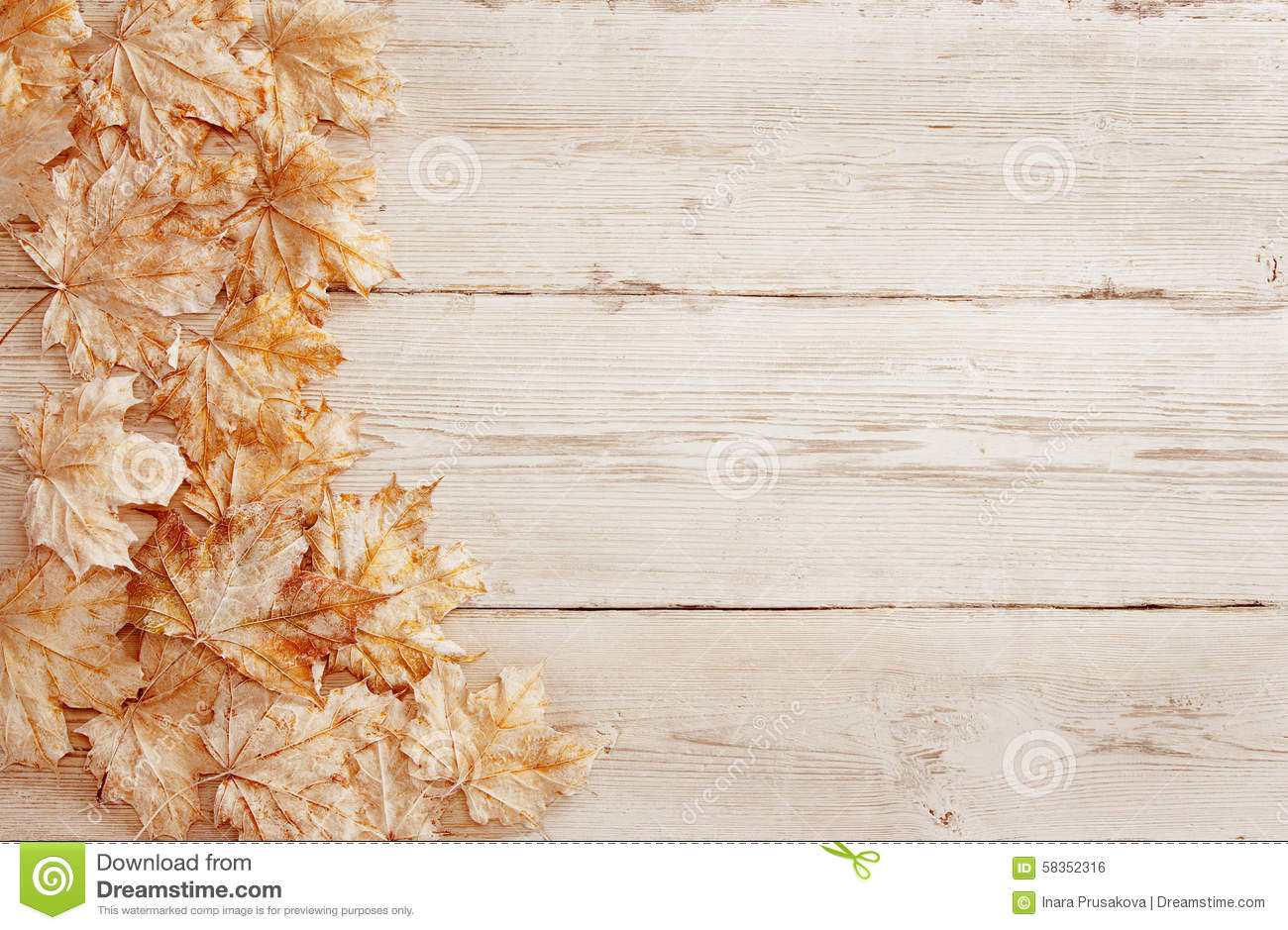 3d Free Fall Nature Wallpaper Wood Background White Leaves Wooden Grain Texture Plank