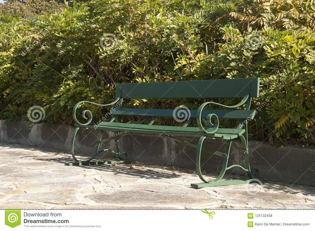 Garden Bench Australia Wooden Garden Bench In Front Of A Hedge Stock Photo Image Of