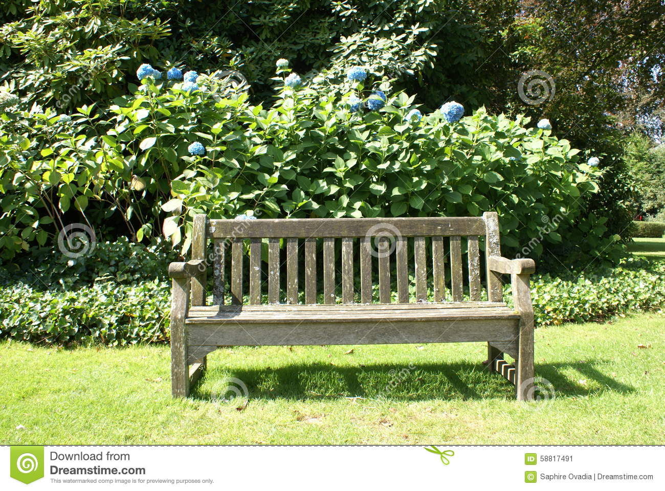Wooden Park Benches Front Wooden Seat In A Garden Stock Photo Image 58817491