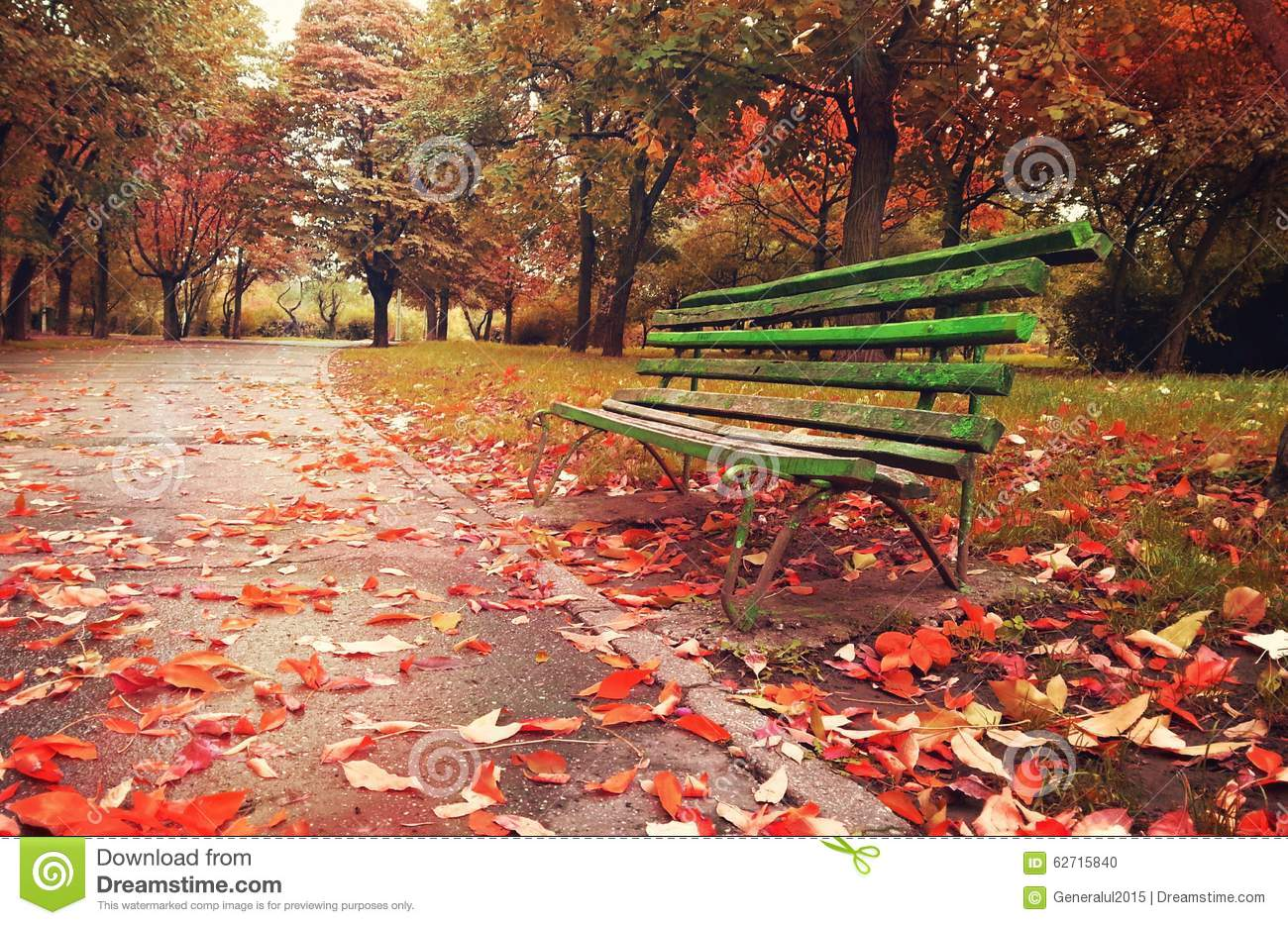 Autumn Leaf Fall Wallpaper Wooden Sofa In A Fantasy Autumn Season Stock Photo Image