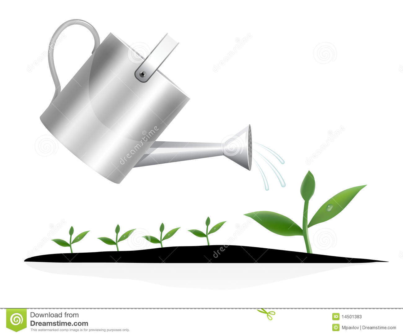 Plant Watering Cans Young Plant With Watering Can Stock Photos Image 14501383