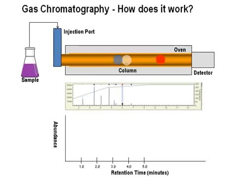 How Does Gas Chromatography Work gracecollege