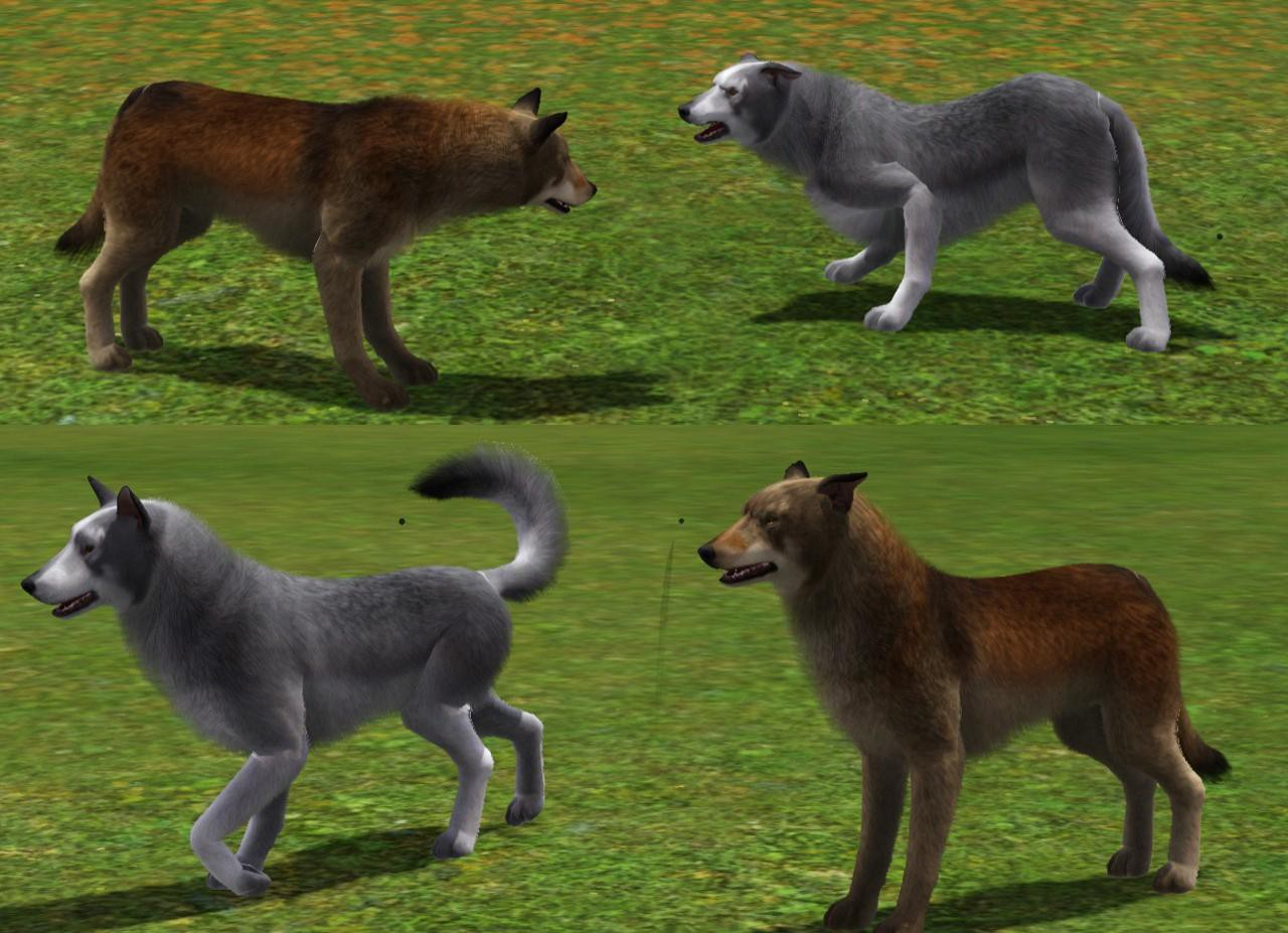 Wolf Garten Online Help Center Mod The Sims Wolves For Your Sims