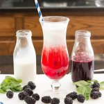 Blackberry Basil Italian Cream Soda