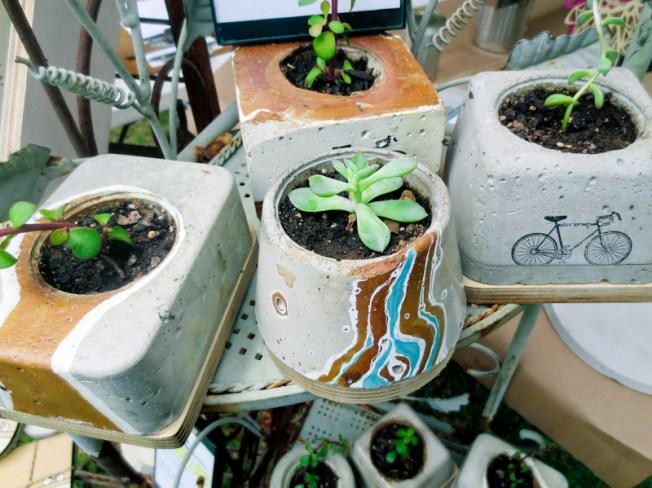 concrete succulent planters by MDC Interiors in Atlanta | tide & bloom