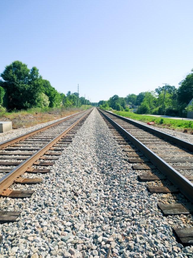 Palmetto-Tracks-1
