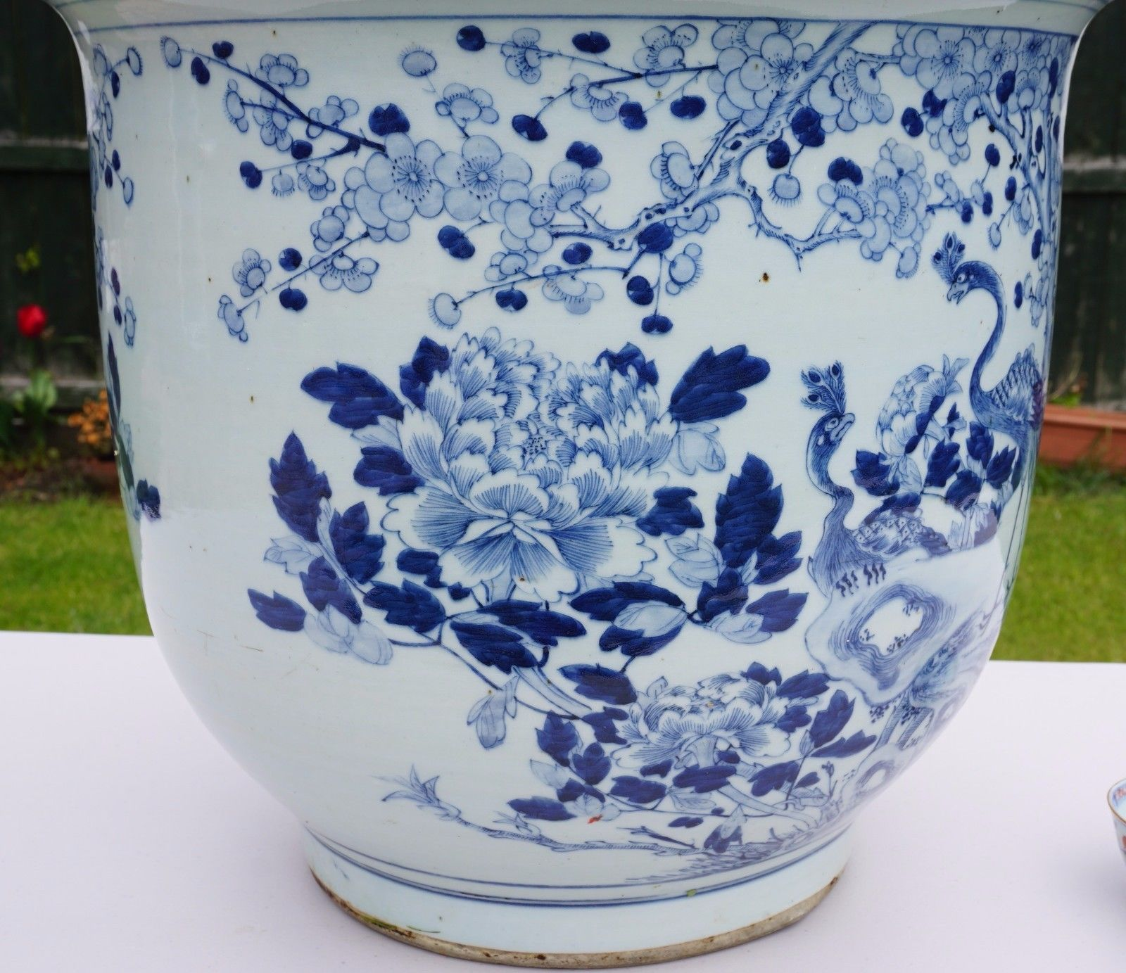 Flower Pots For Sale Huge 19thc Antique Chinese Blue And White Porcelain Vase