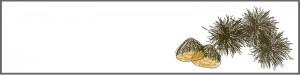 フリー素材:ブログヘッダー;ガーリーな栗のwebデザイン素材