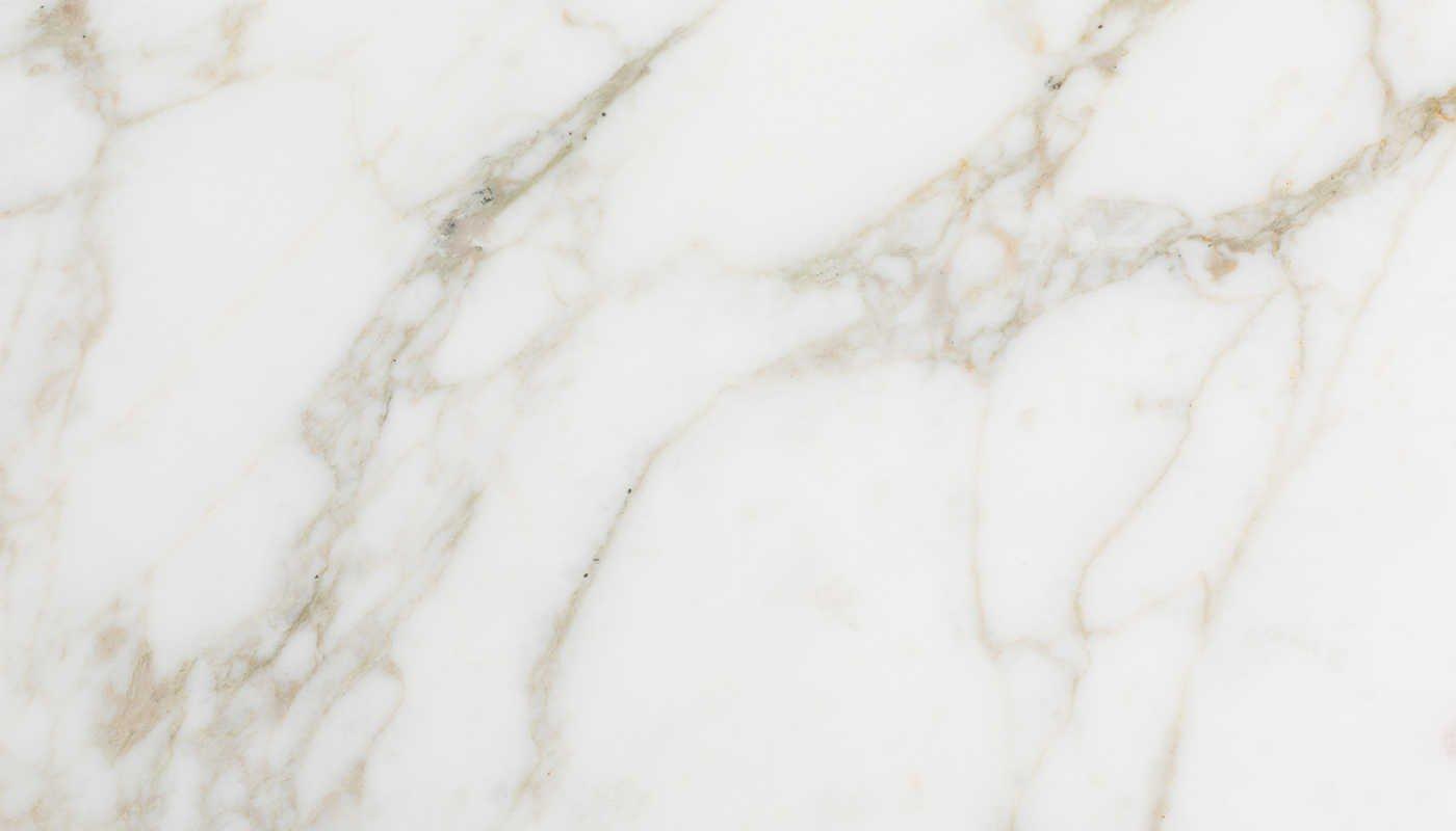 Calacatta 12x24 Honed Marble Tileforless