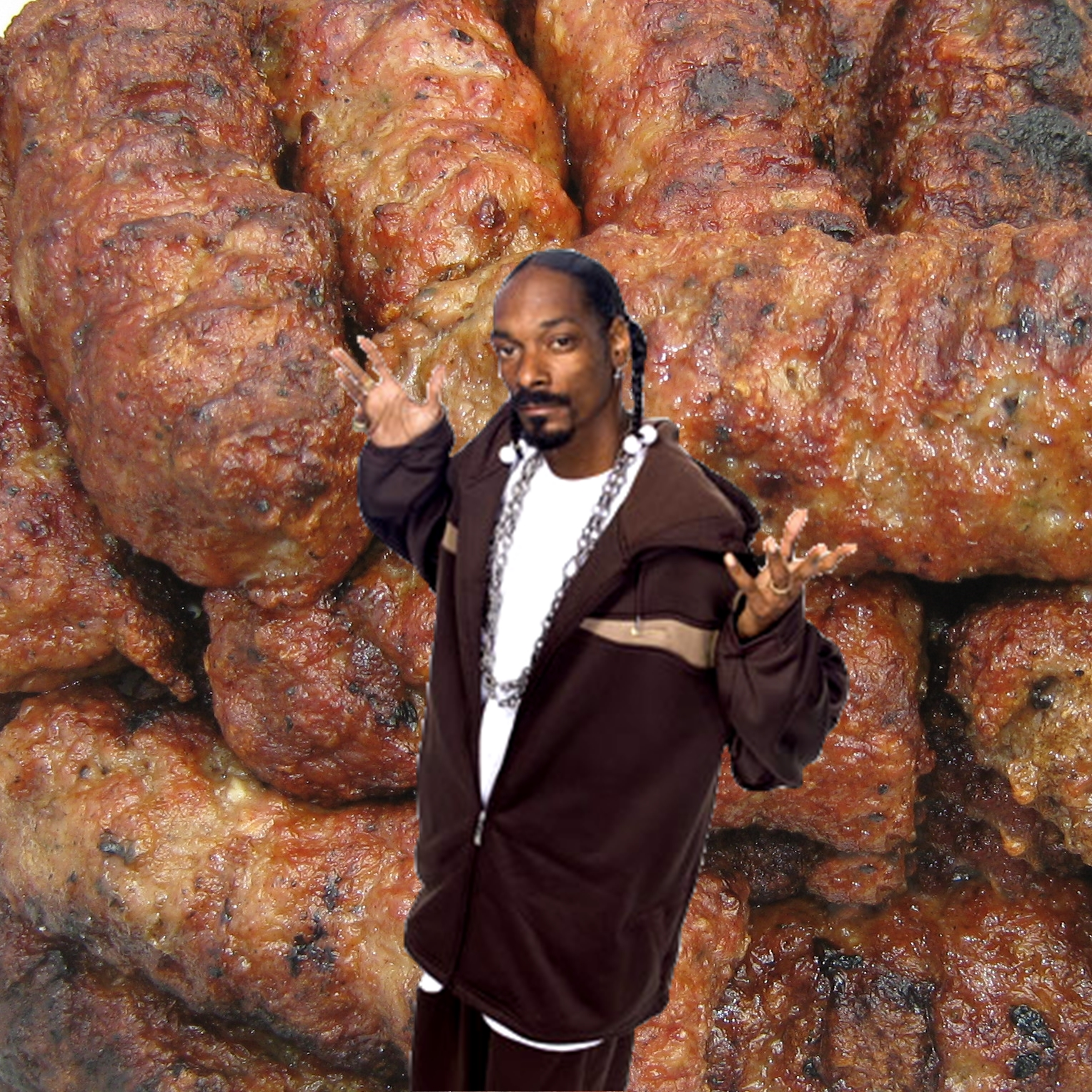 Image result for snoop dogg and pork