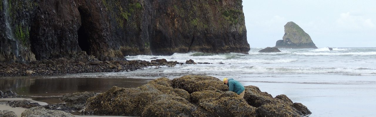 Time Your Tillamook Coast Activities with the Tides