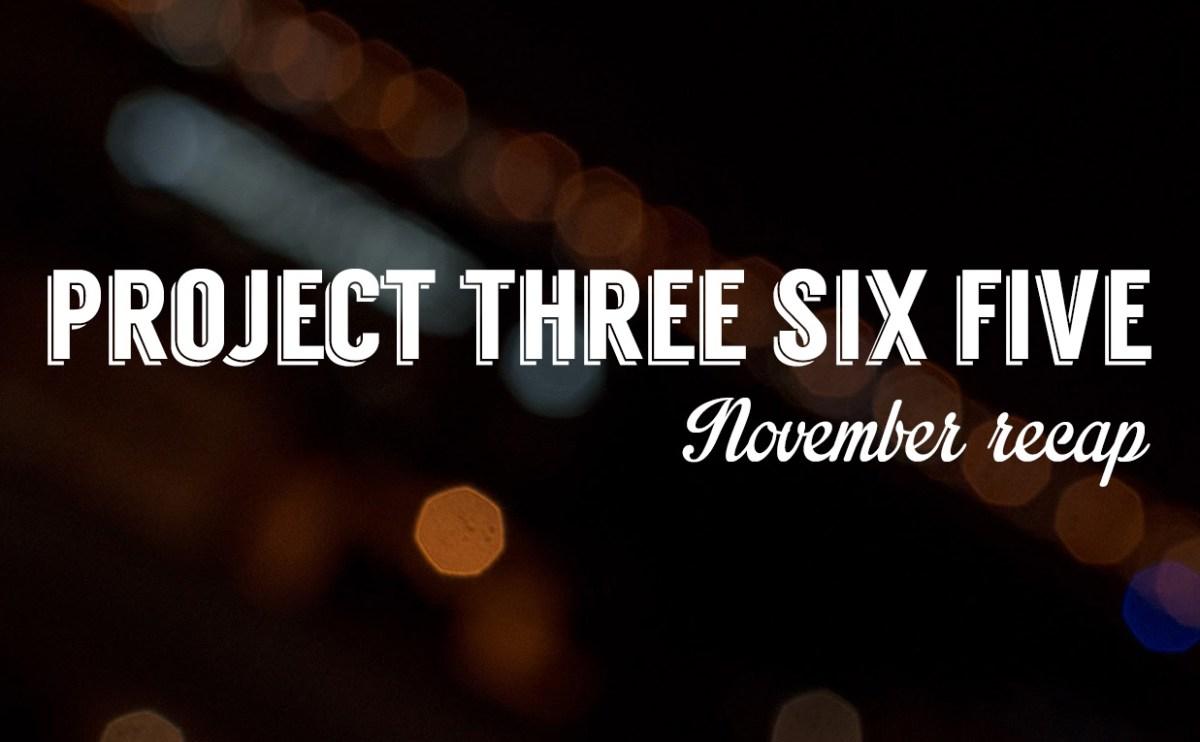 Project 365: November 2015 Recap