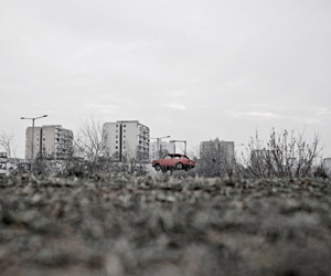 TAMAS DEZSO: Here, Anywhere
