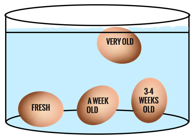 How To Tell If Your Eggs Are Fresh Or Have Expired Times