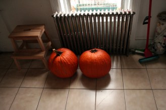 Pumpkins in the Kitchen