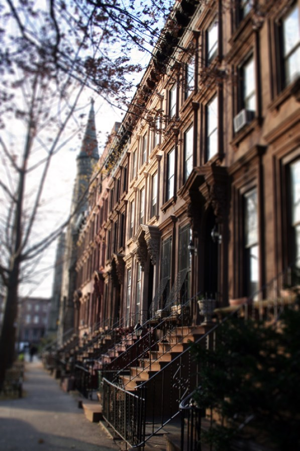 Brooklyn Seasons (1)
