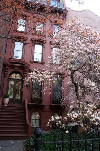 Blossoms @ a Brooklyn Townhouse