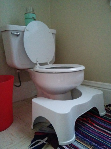 Squatty Potty under toilet
