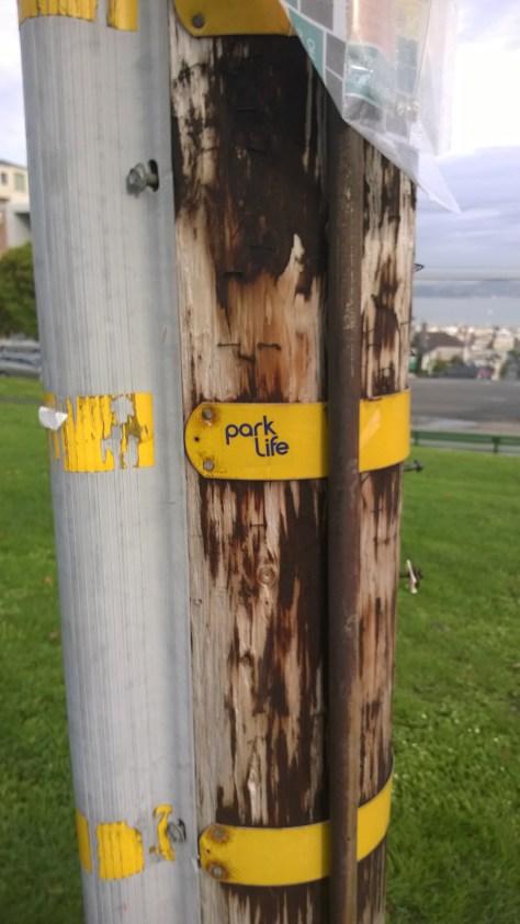 Park Life Sticker