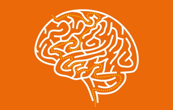 orange-brain-path-608x385.jpg