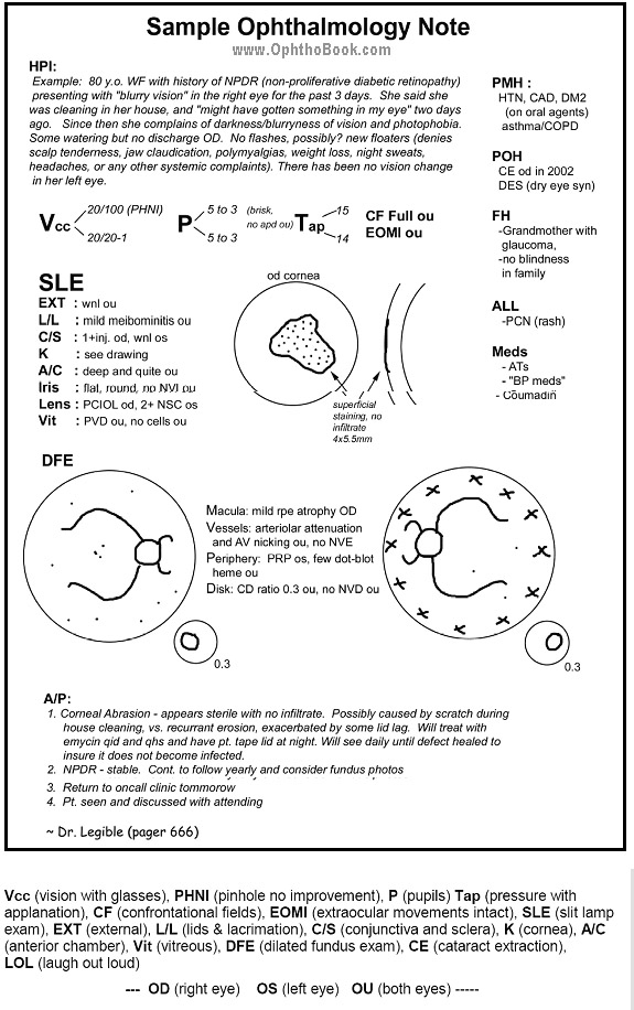 Chapter 1 Eye history and physical - TimRoot - Sample Review Of Systems Template