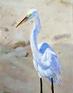 Boca Grande Egret