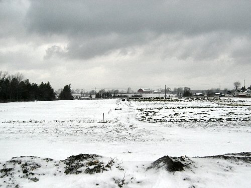 Snow-covered field means the garden season's over!