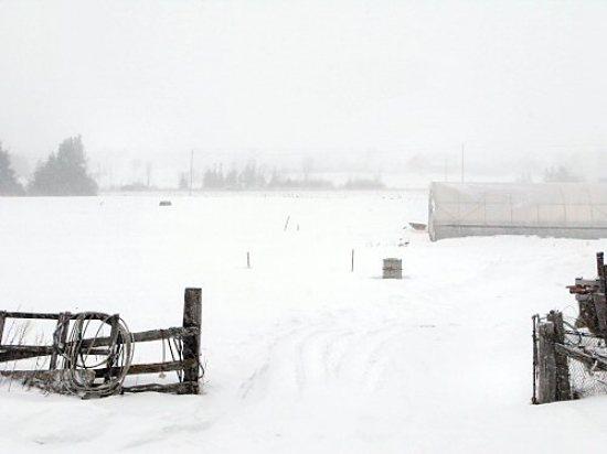 Still snowy