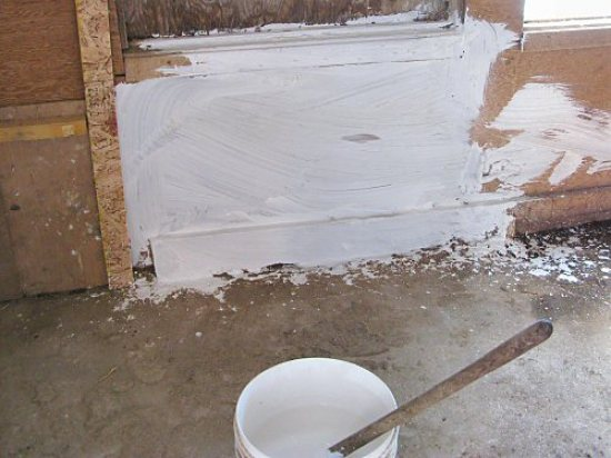 Whitewashing the chicken coop