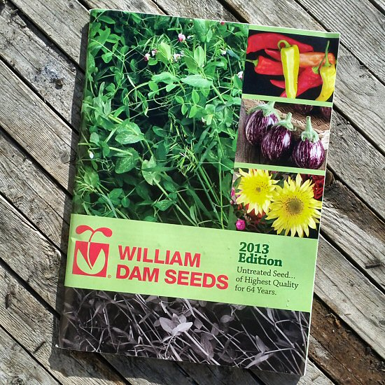 Seed catalog 2013