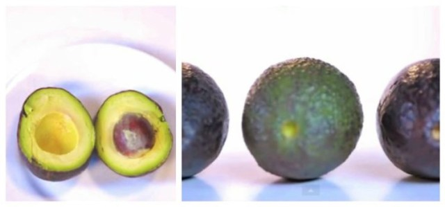 Ripe Avocados Video