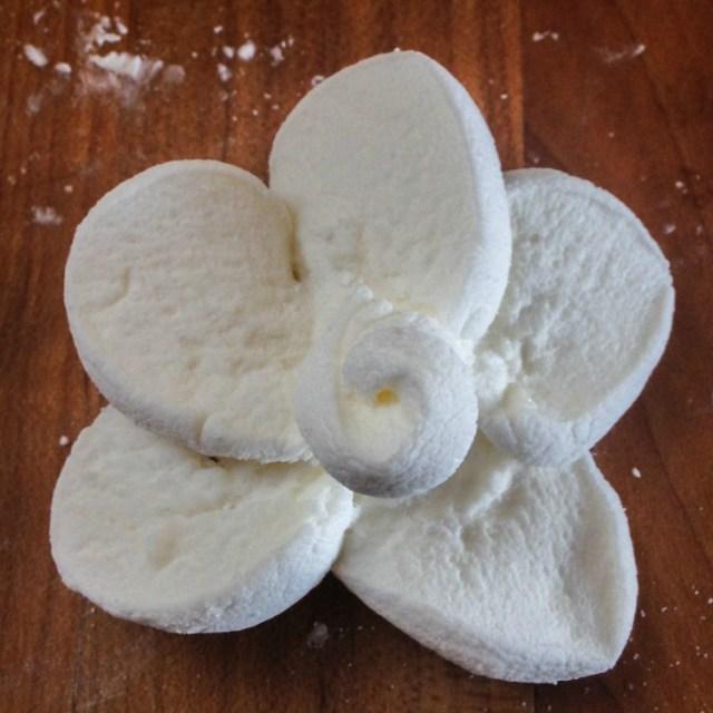 FlowerCupcakes-1-7a